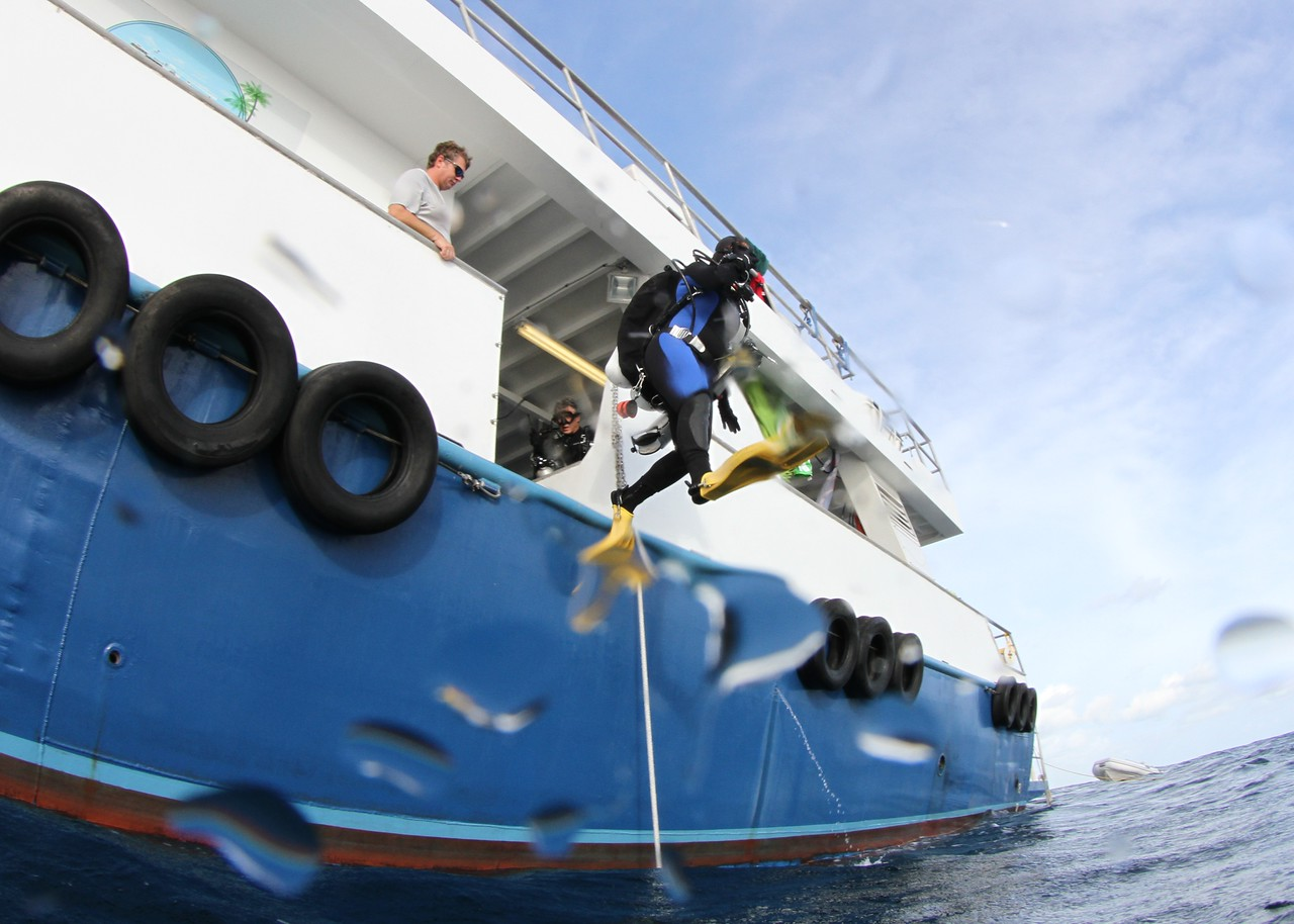 Diving of the M/V Spree, Florida Keys