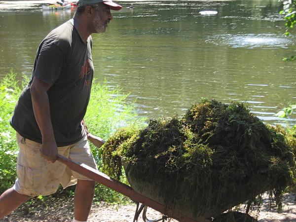 Algae Cleanup 2008